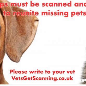LET'S GET 'BEST PRACTICE' FOR VETS WORKING FOR MISSING PETS!  Letter to all vets in the UK